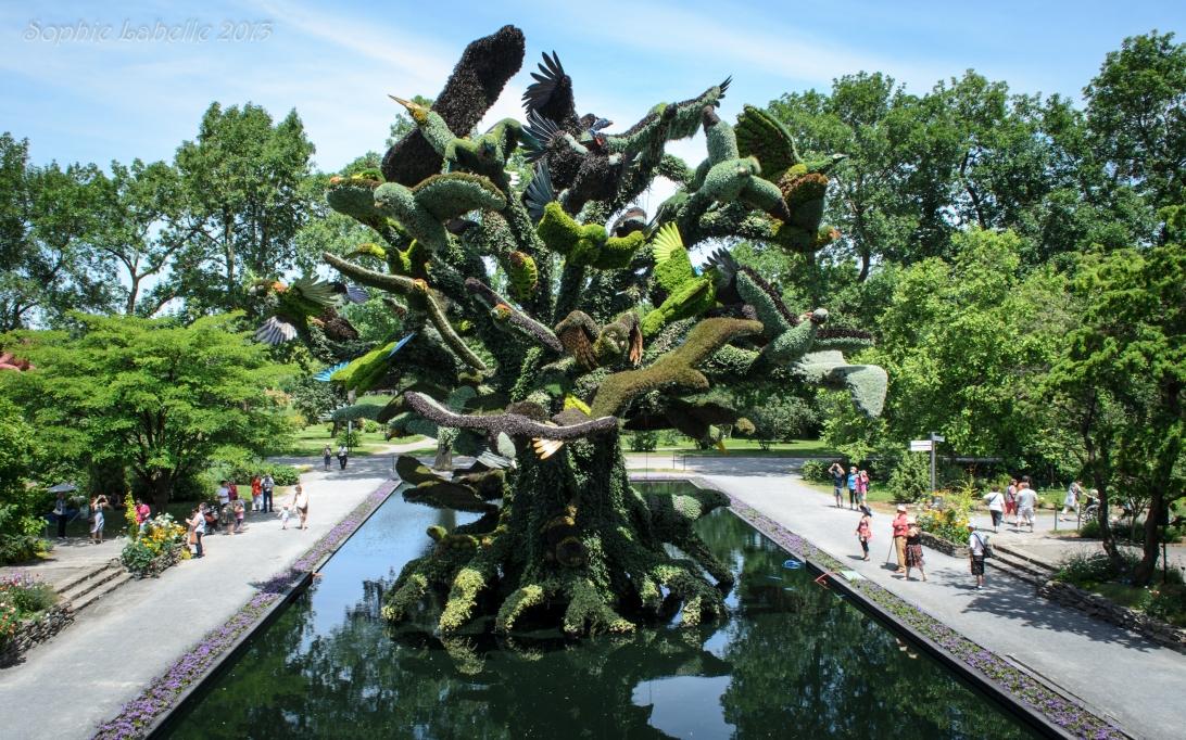 Mosa cultures internationales de montr al montreal - Jardin botanique de montreal heures d ouverture ...